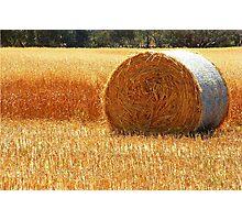 Hay Roll Photographic Print