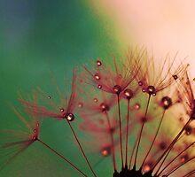RAINBOW DROPS by Terra 'Sunshine' Gilbert
