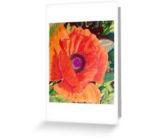 Red Poppy Floral Greeting Card