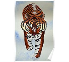 Tiger in the snow painting Poster