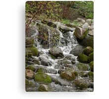 Relaxing Brook Canvas Print