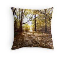 the way of the fallen Throw Pillow