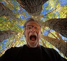 Screaming Trees by Bob Larson