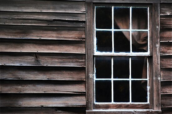 Wood, Window & Drape by Laurie Minor