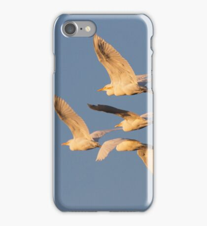 Homeward To Roost iPhone Case/Skin
