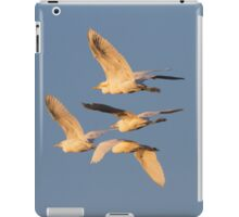Homeward To Roost iPad Case/Skin