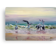 Pelican's Dance Canvas Print