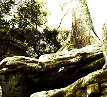 Ta Prohm 1 by fab2can