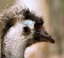 Does my perm look OK? by Colleen Sattler