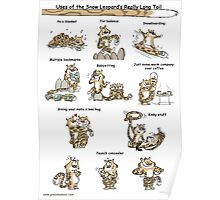 Uses of the Snow Leopard's Tail Poster