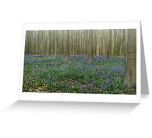 Hallerbos Blues Greeting Card