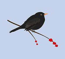 Cute Blackbird by Jacqueline Turton