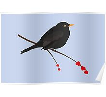 Cute Blackbird Poster