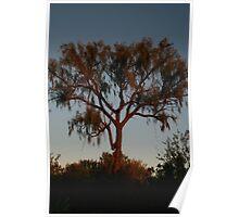 Blood Tree Poster