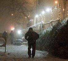 Christmas Snow in New York City by David Myles Stam