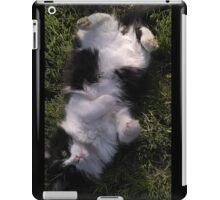 Upside Down World iPad Case/Skin