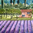 """Land of Lavender"" - French Lavender Field by Timothy Smith"