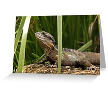Lurking Lizard Greeting Card