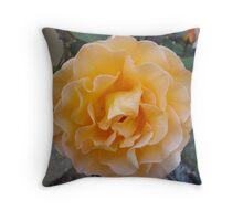 Whiskey Rose Throw Pillow