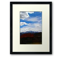 Kissing Camels Point of view Framed Print