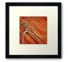 Wood & Stone Framed Print