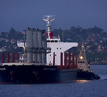 IDSHIP  BULKER - Bulk Carrier by Cecily McCarthy
