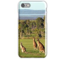 The roos are in the top paddock! iPhone Case/Skin