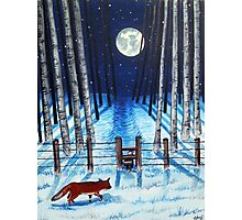 A moonlit stroll Photographic Print