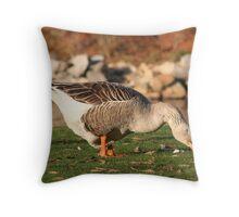 Goose in the Sun Eating Throw Pillow
