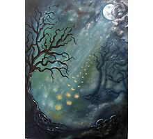 Fairytales and fireflies Photographic Print