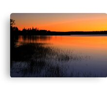 Lake In Golden Hues Canvas Print