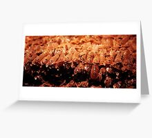 Adriatic Shellfish Greeting Card