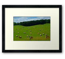 Hayfield Framed Print