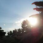 sun between fingers by addicted2joy