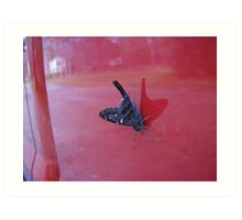 Butterfly reflected in crimson Art Print