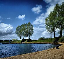 At The Lakeside - Caldecotte, Buckinghamshire by Nick Bland