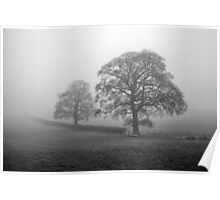 Misty Two Trees Poster