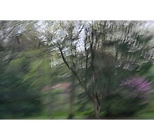 Beauty in blur Photographic Print