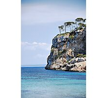 Wind blown cliff top trees... Photographic Print
