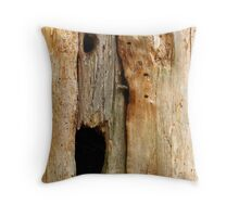 In The Land Of The Blind... Throw Pillow