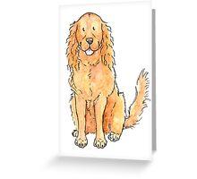 Winnie the cocker spaniel Greeting Card