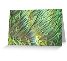 Luminescent sea anemones Greeting Card