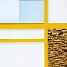 Euclidean in Yellow and Blue by George Parapadakis (monocotylidono)