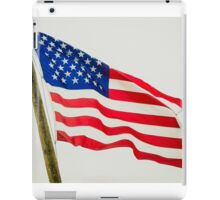 Red White & Blue American Flag iPad Case/Skin