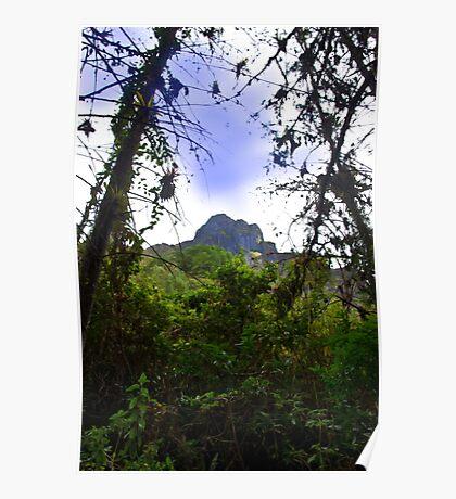 Mountain Overlooking San Fernando, Ecuador Poster