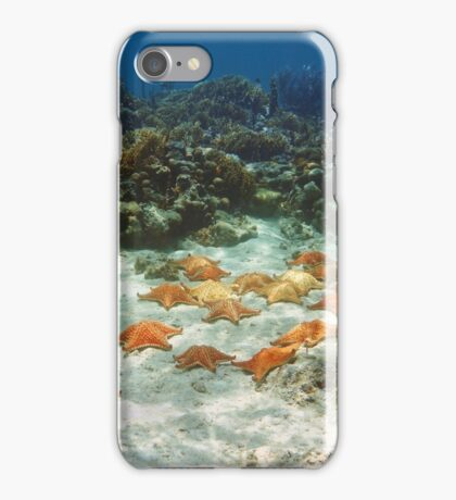 Many starfish underwater in a coral reef iPhone Case/Skin