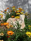 Daisies and the Sandstone Rock by Lucinda Walter