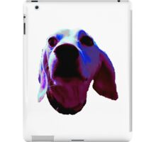 Silly Sully iPad Case/Skin