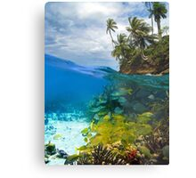 Shoal of fish and tropical shore with coconut trees Metal Print
