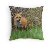 Momma Fox Throw Pillow